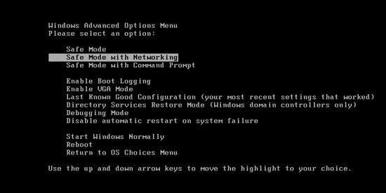 safe mode with networking for Windows XP Vista and Win 7