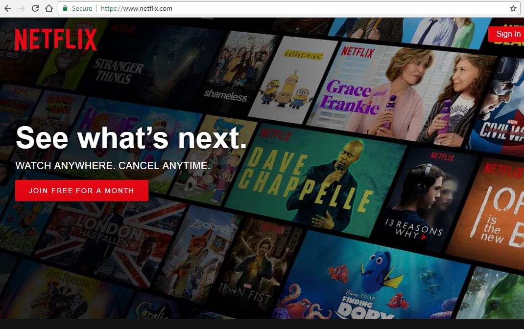 Netflix Life